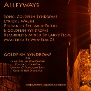 AlleywaysBackCover